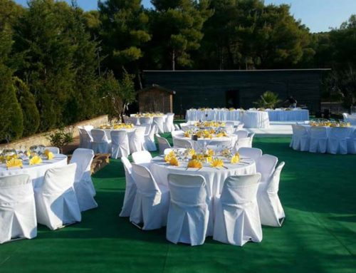 Γαμήλια δεξίωση στον κήπο